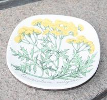 Arabia - Keramik - Tallrik - Renfana - Esteri Tomula