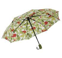 Paraply, Apple